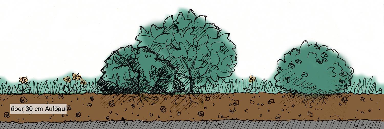intensiv garten substrat
