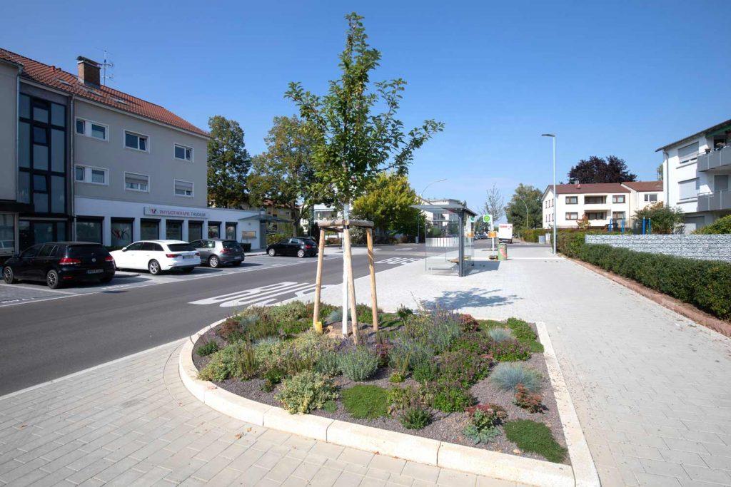 Fellbach Baumsubstrat Straßenbaum
