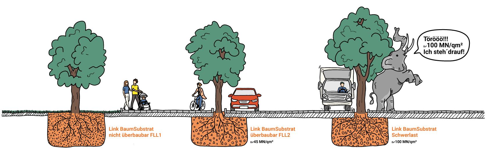 Infografik Baumsubstrate