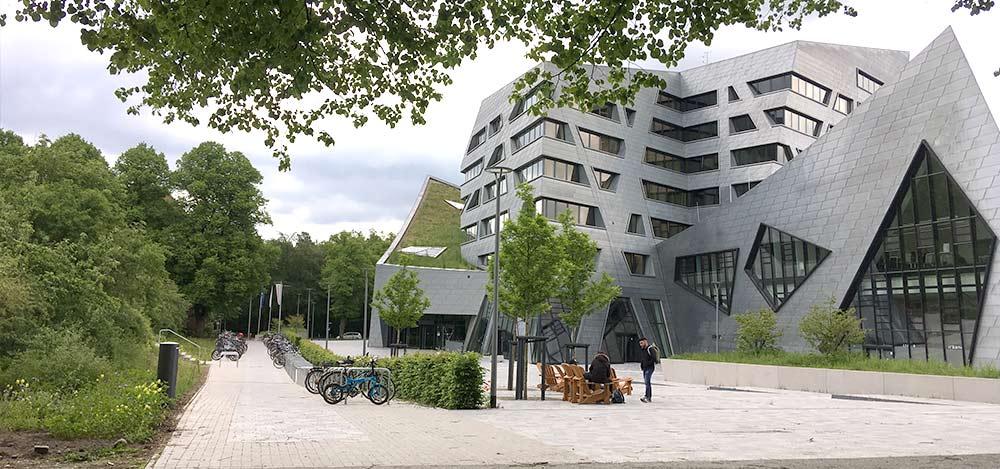 Leuphana Universität Lüneburg Dachbegrünung