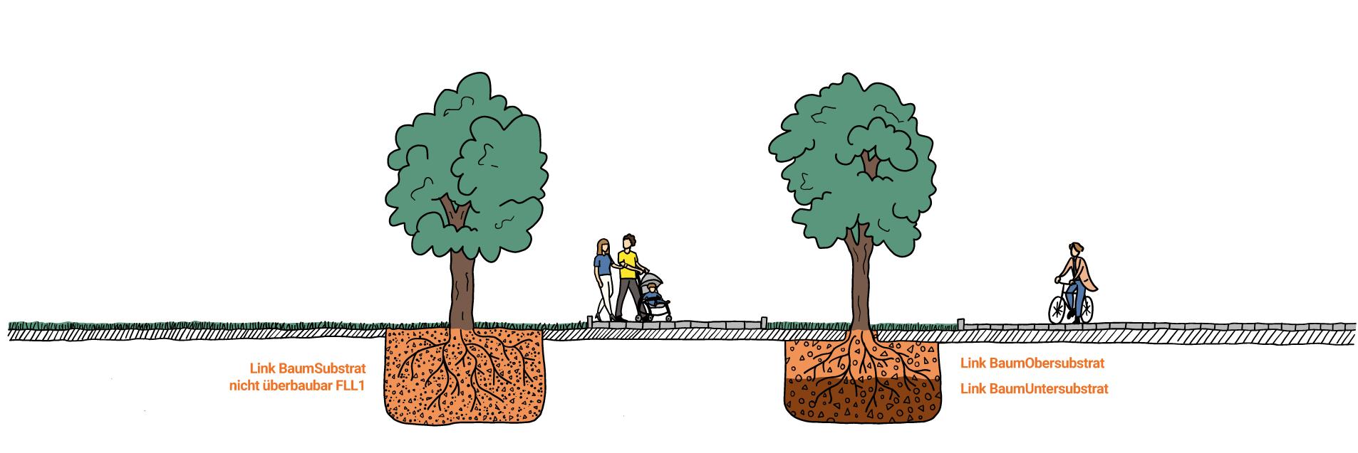 Grafik Vergleich Baumsubstrat Baumuntersubstrat