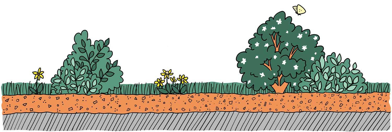 Illustration Aufbau Inteniv Gartensubstrat