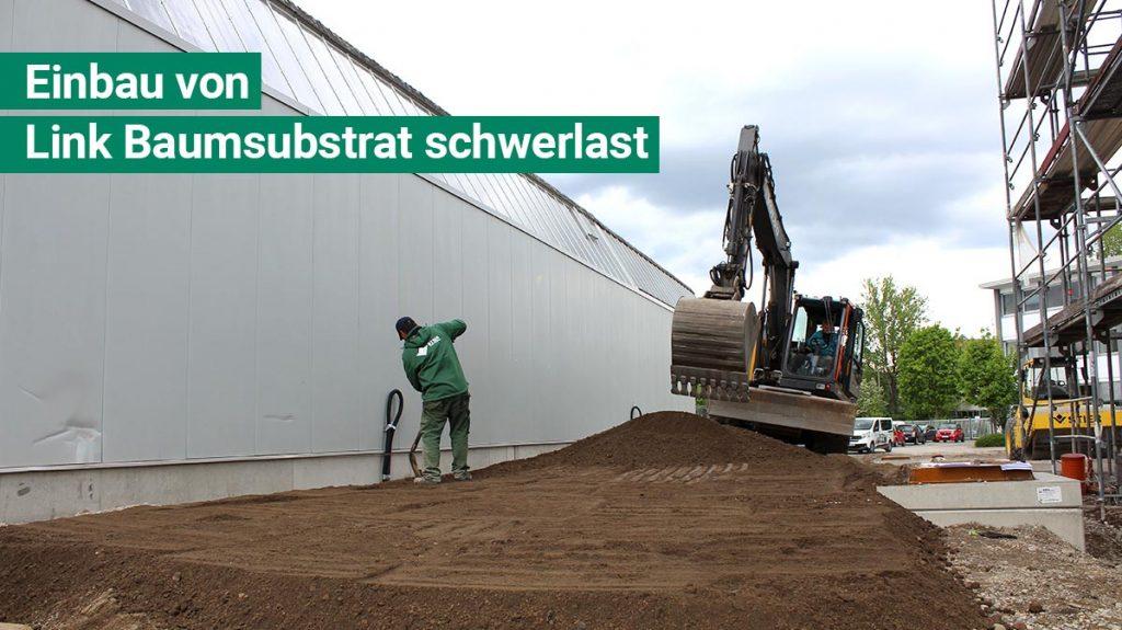 Einbau von Link Baumsubstrat in Stuttgart